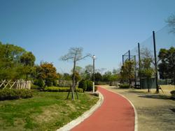 DSCN4689